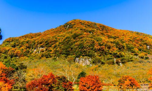 梅だけじゃない!秋の絶景が幕山で楽しめる♪