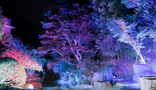 湯河原温泉の夜を幻想的に愉しむスポット!